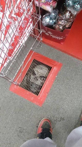 creepy,satan,skulls,Target