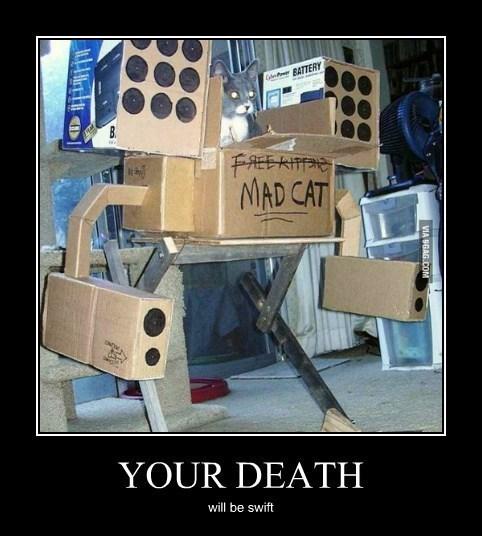 cat,box,robot,funny,mechs