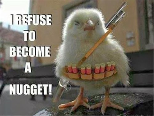 chicks,refuse,nugget