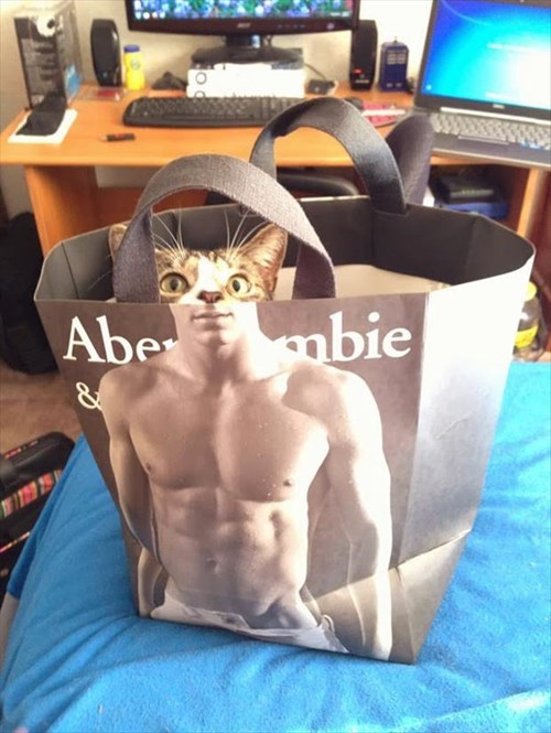 abercrombie Cats bag buff funny - 7965692672