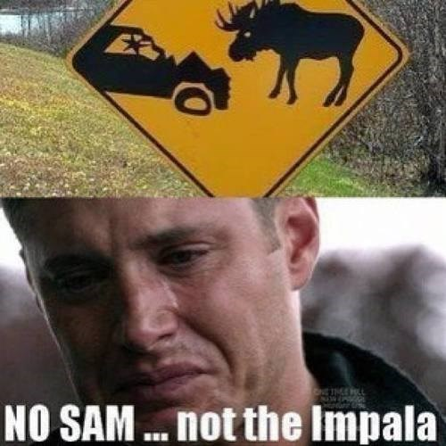 dean winchester impala Supernatural - 7965694208