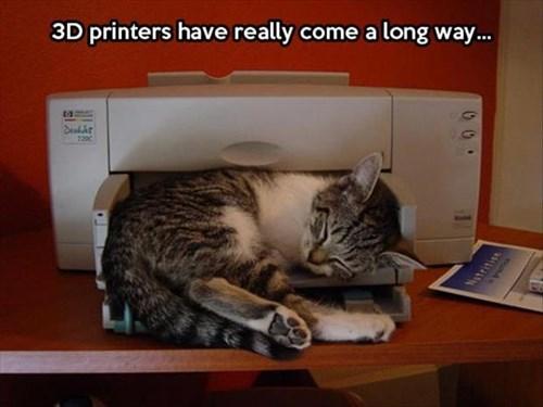 Cats,cute,printers