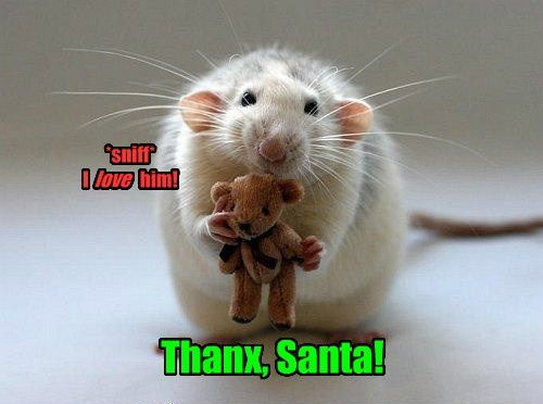 cute christmas mice rats teddy santa - 7967645184