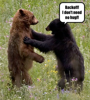 bears,hugs,funny