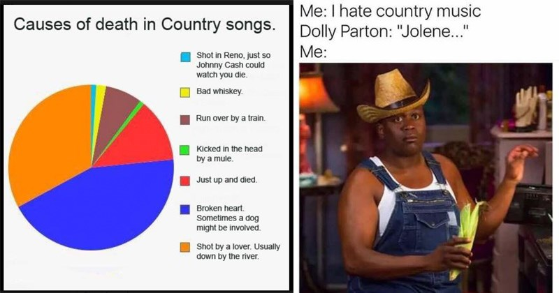 memes about the country music scene and the typica shortcomings of the genre