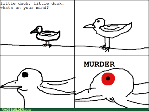 ducks - 7968749056