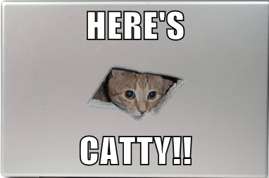 HERE'S  CATTY!!