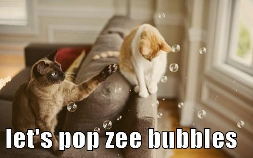 Cats bubbles pop - 7969805056