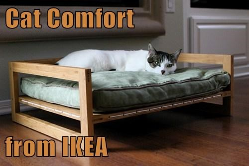 Cats,cute,bed,ikea