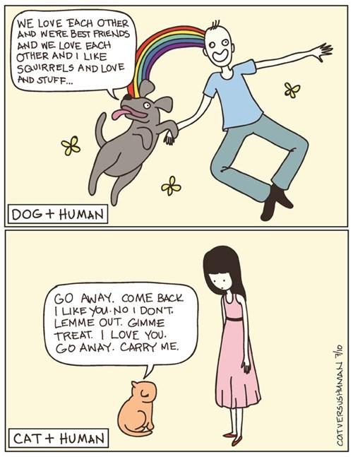 Cats dogs funny web comics - 7969812736
