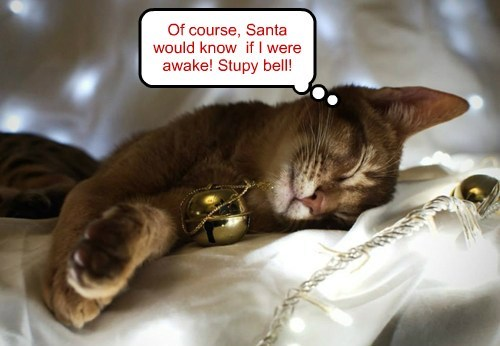 Of course, Santa would know if I were awake! Stupy bell!