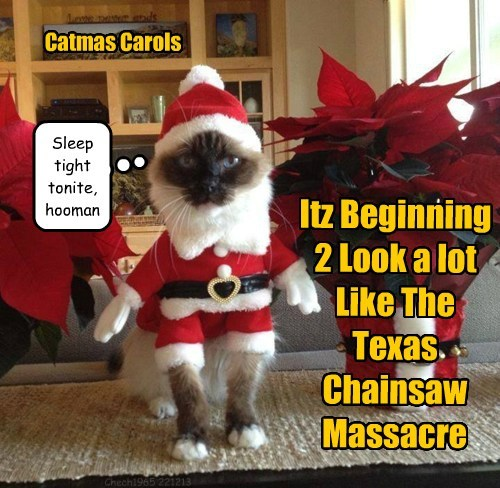 Catmas Carols Itz Beginning 2 Look a lot Like The Texas Chainsaw Massacre Sleep tight tonite, hooman Chech1965 221213