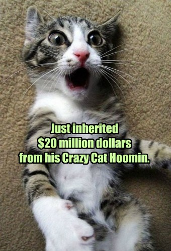 Cats,cute,inherit,millions