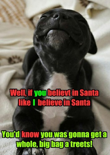 cute dogs christmas puppies santa - 7970249216