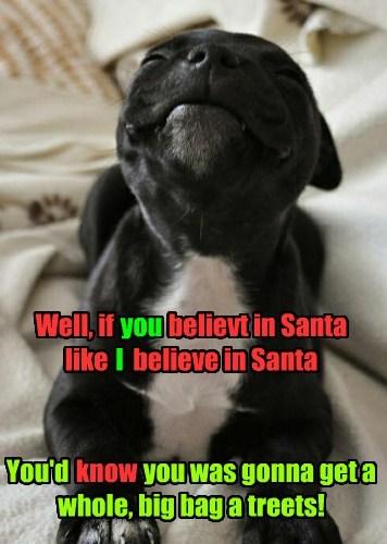 cute christmas puppies santa - 7970249216