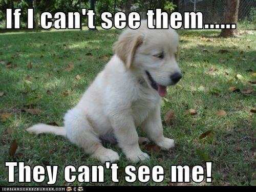 cute logic puppies hide - 7970331392
