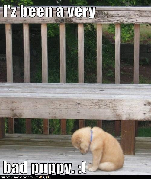 cute hug puppies Sad - 7970355968