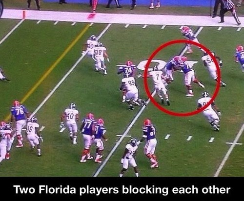 college football,florida,idiots