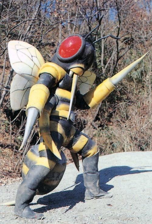 bees,Japan,wtf