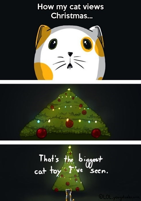 Cats christmas web comics - 7971499520