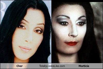 totally looks like Morticia cher