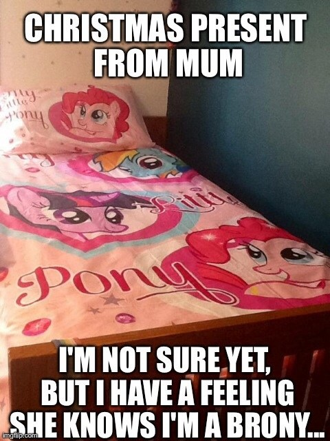 Bronies,christmas presents,MLP