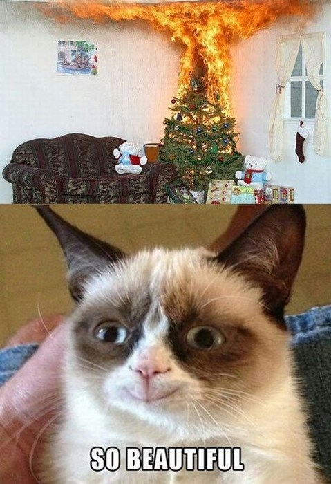 christmas Grumpy Cat - 7972770048