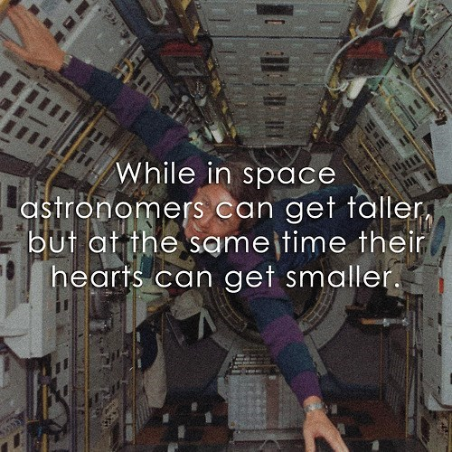 funny,space,smaller,taller