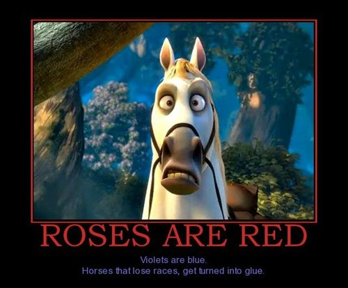 rhyme glue horses funny - 7973069568