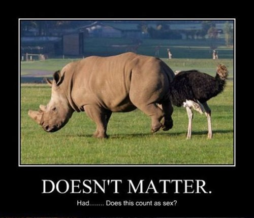 rhino doesnt matter sexy times ostrich - 7973074688
