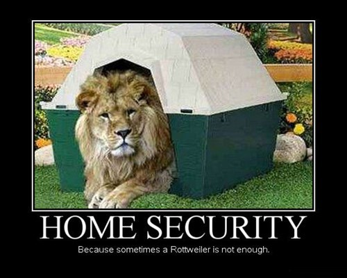 animals,dog house,funny,security,lion