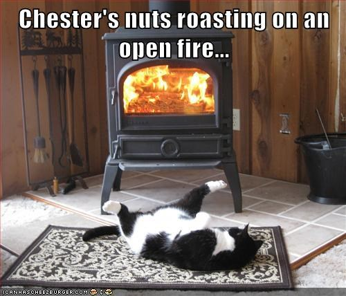 Cats christmas funny puns chestnuts - 7974062592