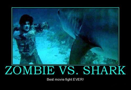 fight,funny,zombie,shark