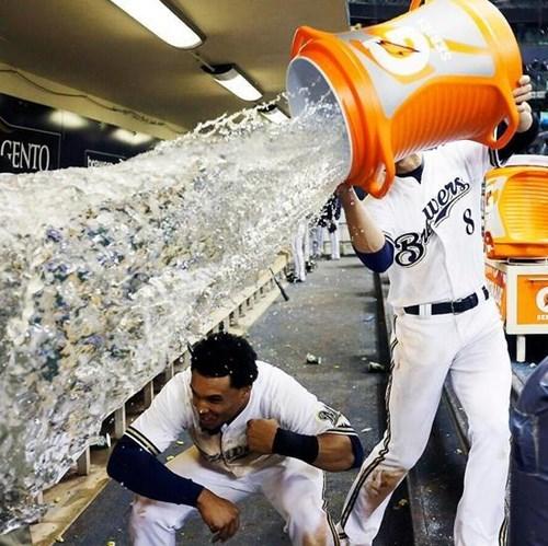 baseball photobomb perfectly timed