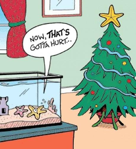 christmas stars web comics - 7975100928