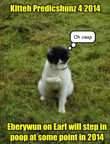 Kitteh Predicshunz 4 2014 Eberywun on Earf will step in poop at some point in 2014 Oh cwap Chech1965 271213