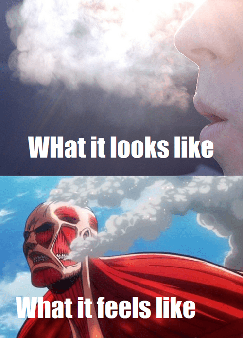 expectations vs reality anime how it feels attack on titan - 7975157504