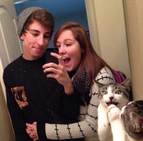photobomb,mirrors,Cats