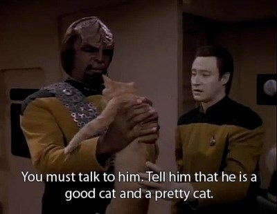 cat,TNG,Worf,data,Star Trek