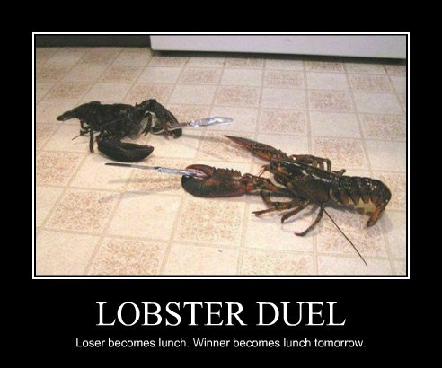 LOBSTER DUEL Loser becomes lunch. Winner becomes lunch tomorrow.
