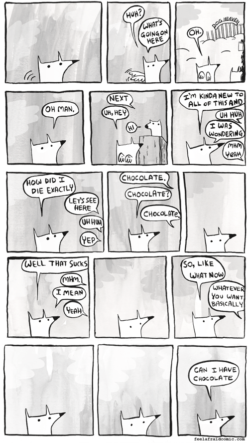 dogs heaven chocolate web comics - 7976471552