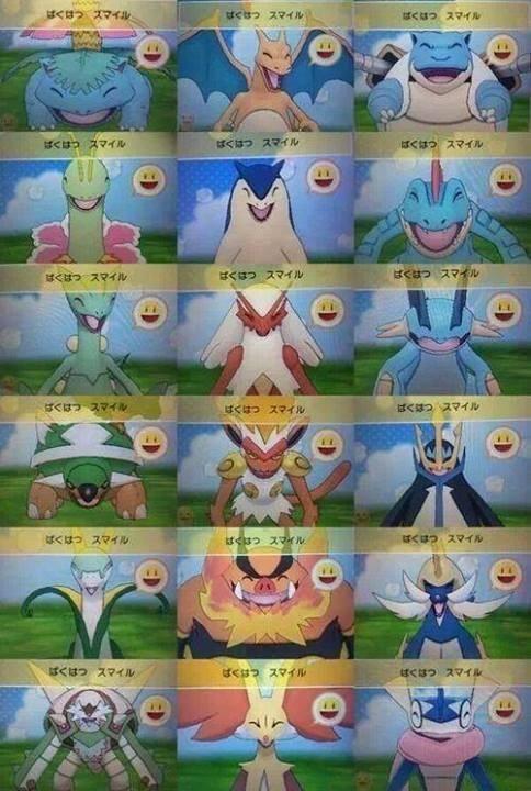 Pokémon starters pokemon-amie - 7976606208