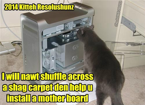 2014 Kitteh Resolushunz I will nawt shuffle across a shag carpet den help u install a mother board Chech1965 281213