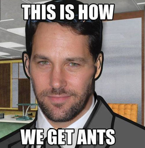 ant man archer paul rudd - 7978251520