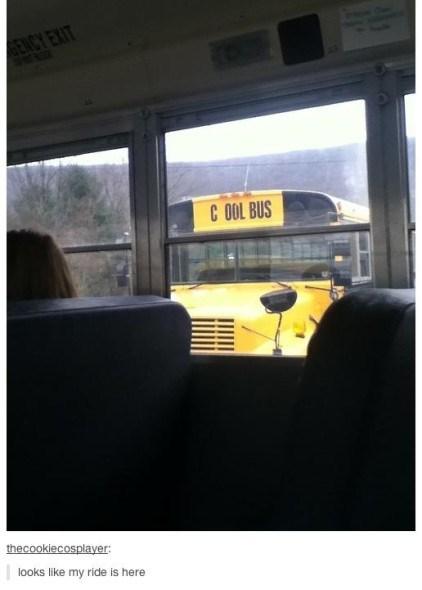 school school bus - 7979057408