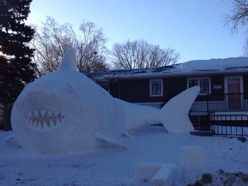 snow snow man shark winter - 7979318784