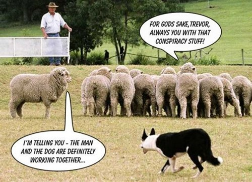conspiracy dogs shepherds sheep - 7979326464