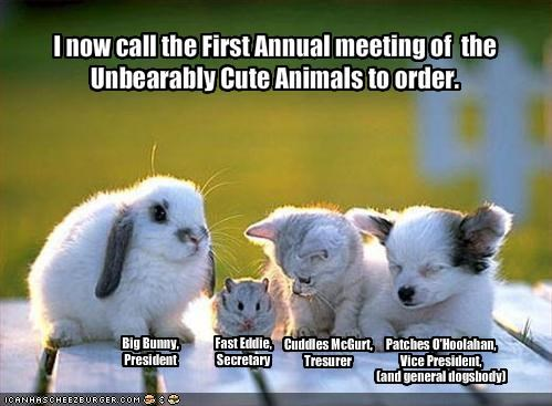 I now call the First Annual meeting of the Unbearably Cute Animals ...