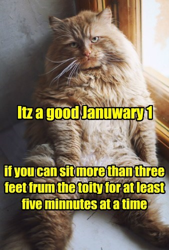 Itz a good Januwary 1 if you can sit more than three feet frum the toity for at least five minnutes at a time