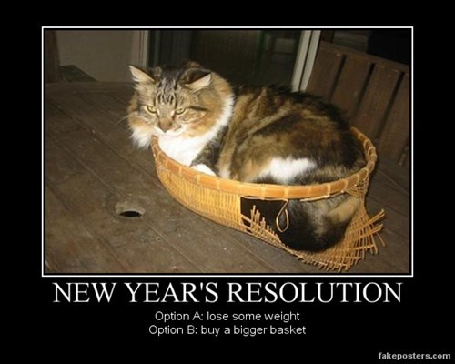 basket funny new years resolution - 7980705024